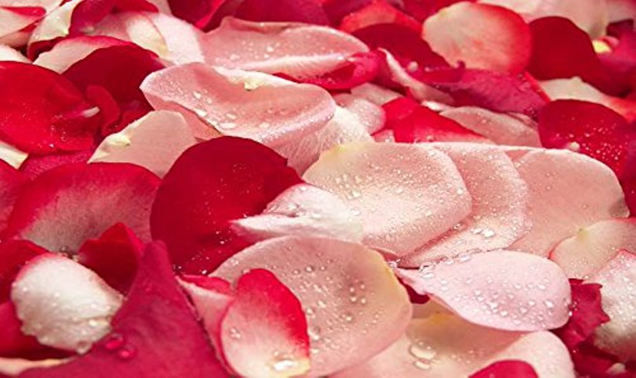 Try our new Rosewater Facial Toner!